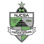 NJCSA logo