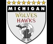 MichiganWolvesHawks-logo